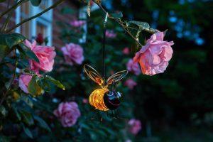 Bee Bug Lights