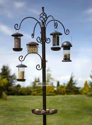 Elegance Bird Station